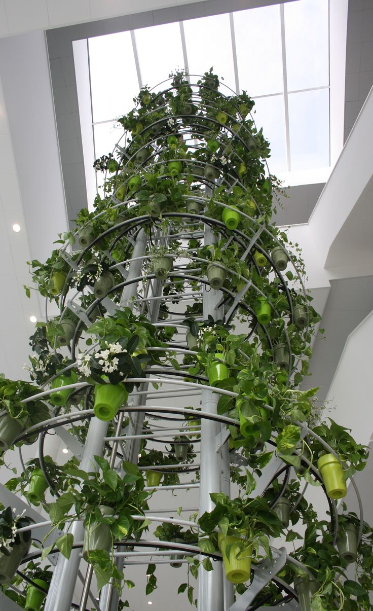 project of a tree 18 meters high and consists of 600 plants