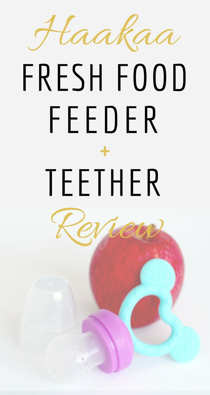 HAAKAA FRESH FOOD FEEDER + TEETHER REVIEW | Use this awesome product to introduce fresh food to your baby!
