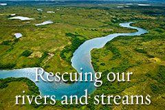 Sauver nos rivières et ruisseaux