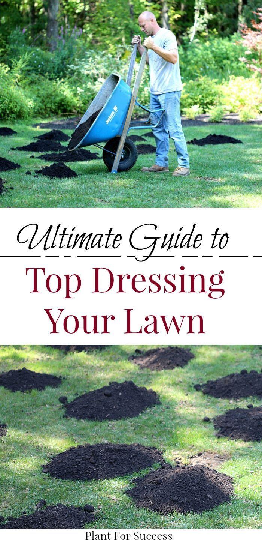 29+ Best soil for top dressing grass inspirations