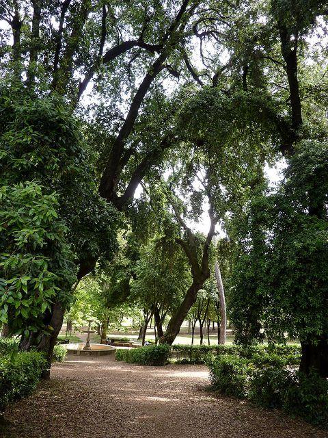 In the Villa Borghese Park, Rome
