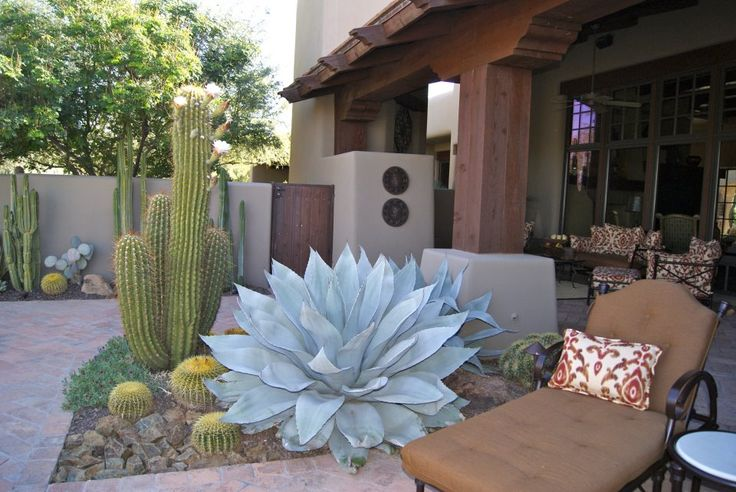 TAKE IT OUTSIDE—How's this for an amazing specimen agave! Saw it at a house landscaped by Mark Wdowiak and his crew from Desert Foothills Landscape. Like it? —Nancy Erdmann/Garden Editor