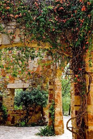 Lady Bird Johnson Wildflower Center. I dream of a garden like this someday...