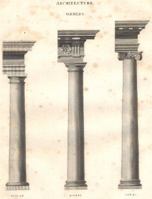 ARCHITECTURE ORDERS: Tuscan; Doric; Ionic columns. (Oxford Encyclopaedia);1830
