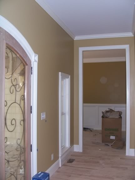 Camelback By Sherwin Williams For The Home Pinterest