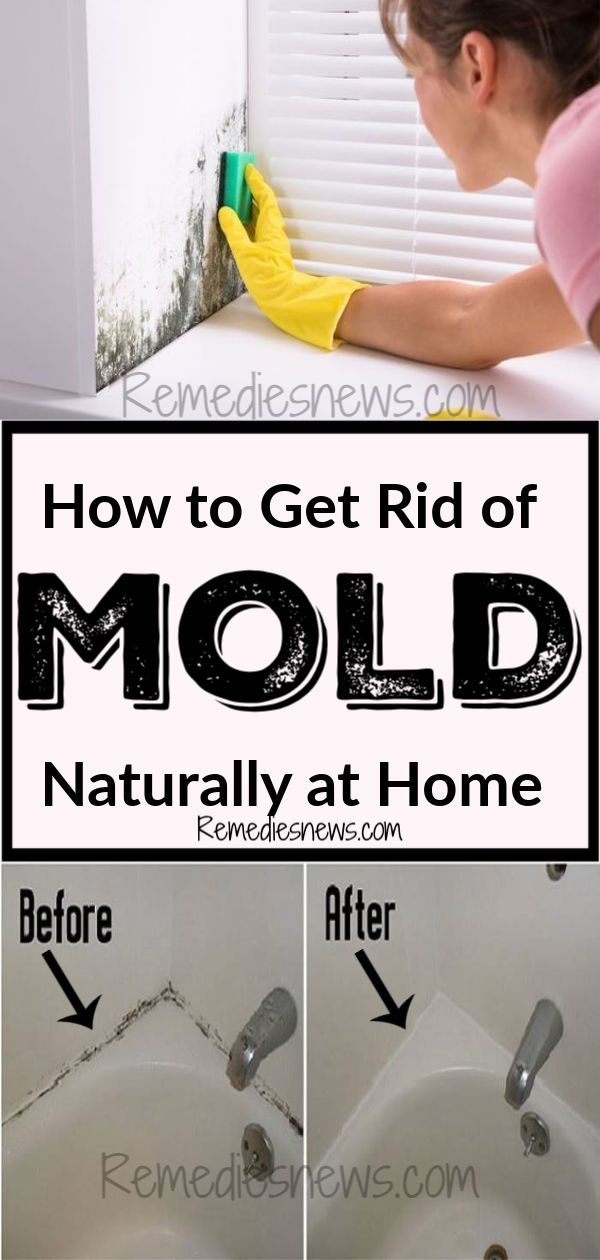 How To Get Rid Of Mold Naturally At Home Try This Home Remedies To Remove Black Mold And Mildew On The Wa Get Rid Of Mold Mold In Bathroom House Cleaning