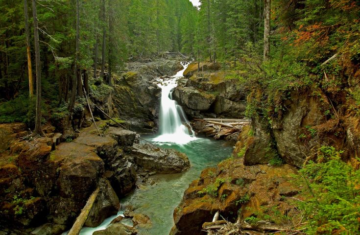 Lewis County is an amazing county for hiking, especially if what you seek are beautiful waterfalls to reward you at the end of your hike.