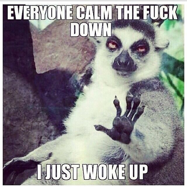 So true. Too early in the AM to start drama lol.
