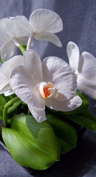 Белая орхидея. Фрагмент интерьерной композиции в восточной теме. #цветыизглины  #керамическаяфлористика #орхидеи #декор  #длядома #ceramicflowers #polymerclay #handmade