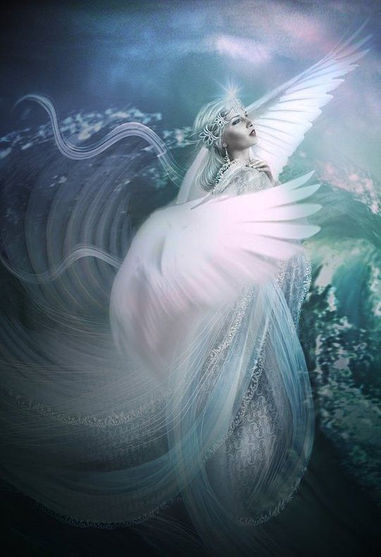 Beautiful fantasy angels can consult