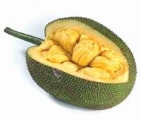 Apart from its delightful taste, jackfruit also rich in important nutrient like vitamin A, vitamin C, calcium, potassium, iron, thiamin, riboflavin, niacin, magneisum and many other nutrients.