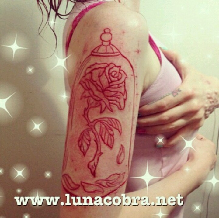 Enchanted rose scarification instagram lunacobra