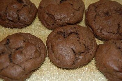 Double Chocolate Cookies: Chocolates, Double Chocolate Cookies, Vegans, Cookies Recipe, Damn, Vegan Chocolate, Heartbreak Cookies, People
