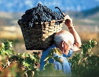 VISIT GREECE| Fall for Crete, Autumn is the right time to enjoy and explore the different faces of Crete. #fall4crete #crete #harvest