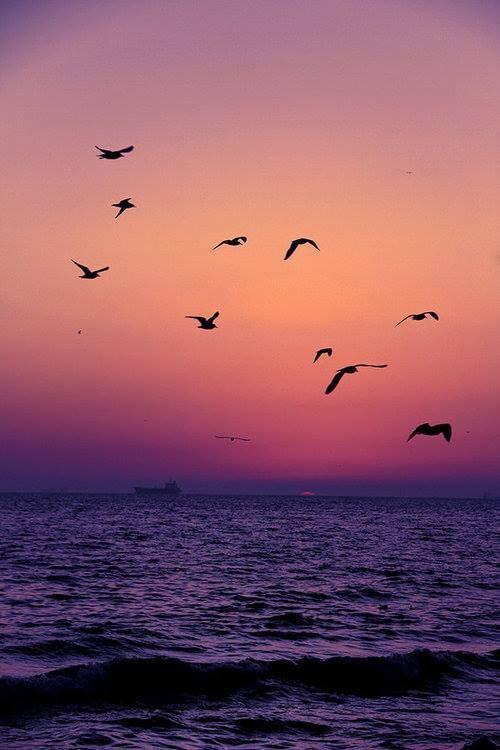 Port of Thessaloniki at sunset