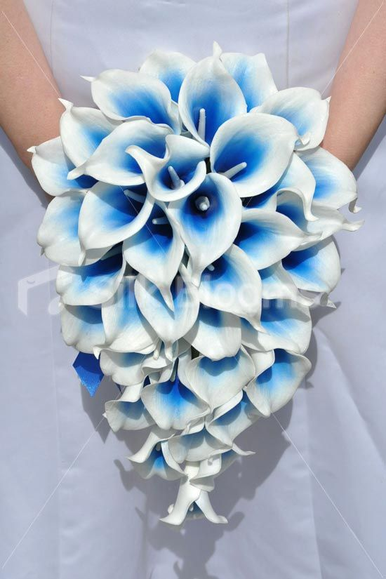 This electric blue bridal bouquet is made with premium, realistic Vermeer lilies. Made in a teardrop design this artificial bouquet would suit any bride. This blue lily bridal bouquet is finished with a blue satin ribbon on the stem with ribbon bow and crystal pin.