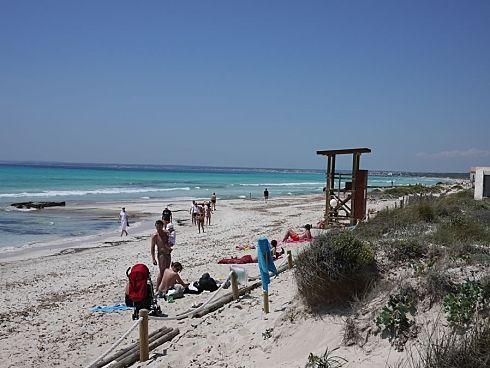 http://www.seemallorca.com/walking/routes/coastal-walk-from-ses-salines-to-es-trenc-beach-colonia-de-sant-jordi-661078