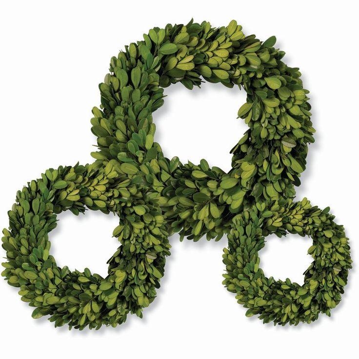 Mini Preserved Boxwood Wreaths (Set of 3)