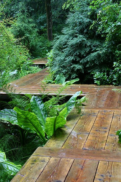 This zig zag raised wooden walkway gives you a sense of adventure.