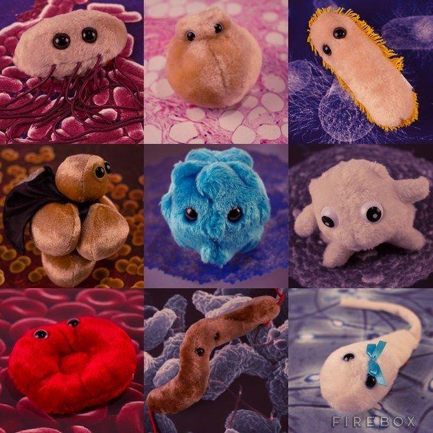Giant stuffed microbes.