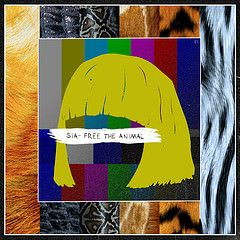 #sia   #siafurler   #1000formsoffear   #australia   #poprock   #alternative   #playlist   #davidguetta   #catchingfire   #newrelease   #2014 #free #animal
