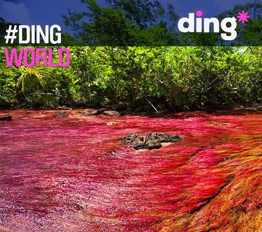 #dingworld - Guess what country this spectacular place is! www.ding.com