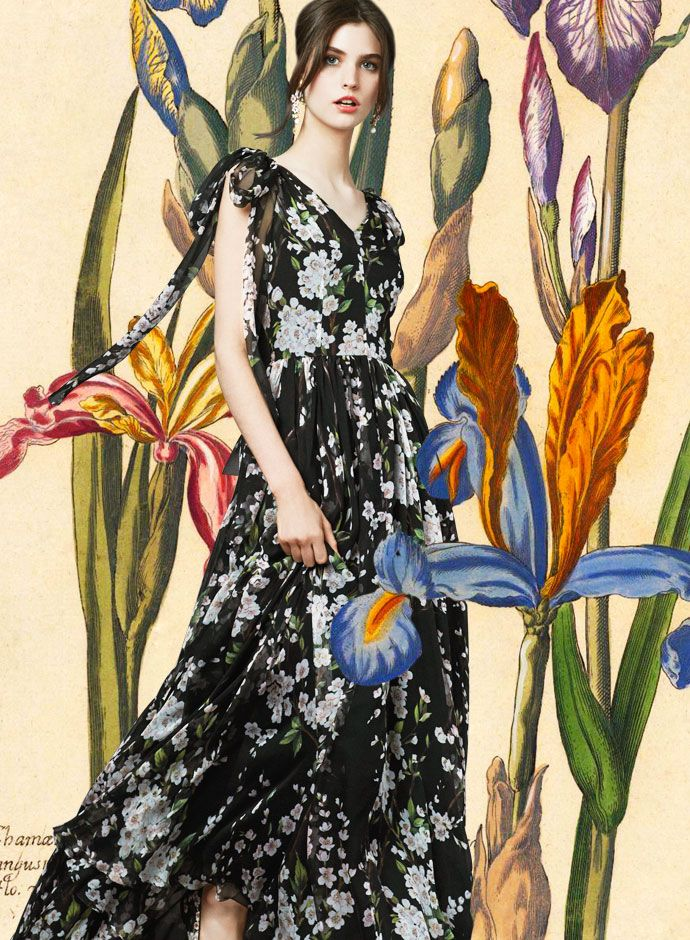 Уроки ботаники от Dolce & Gabbana: Красота: Мир женщины: Subscribe.Ru