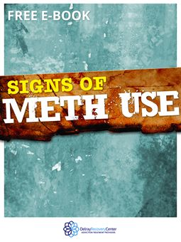 Signs of Meth Use E-Book