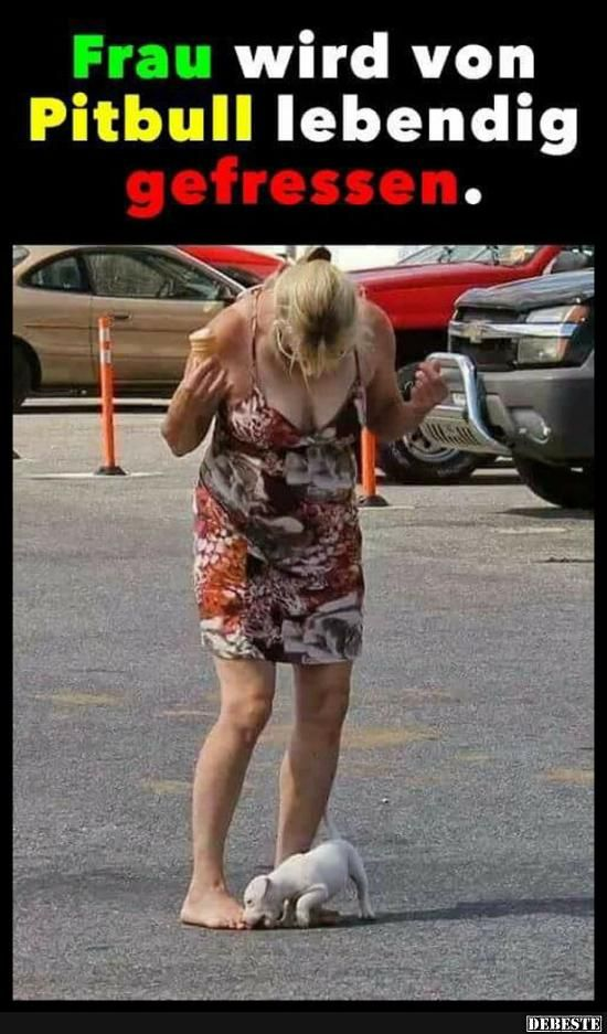 Frau wird von Pitbull lebendig gefressen..