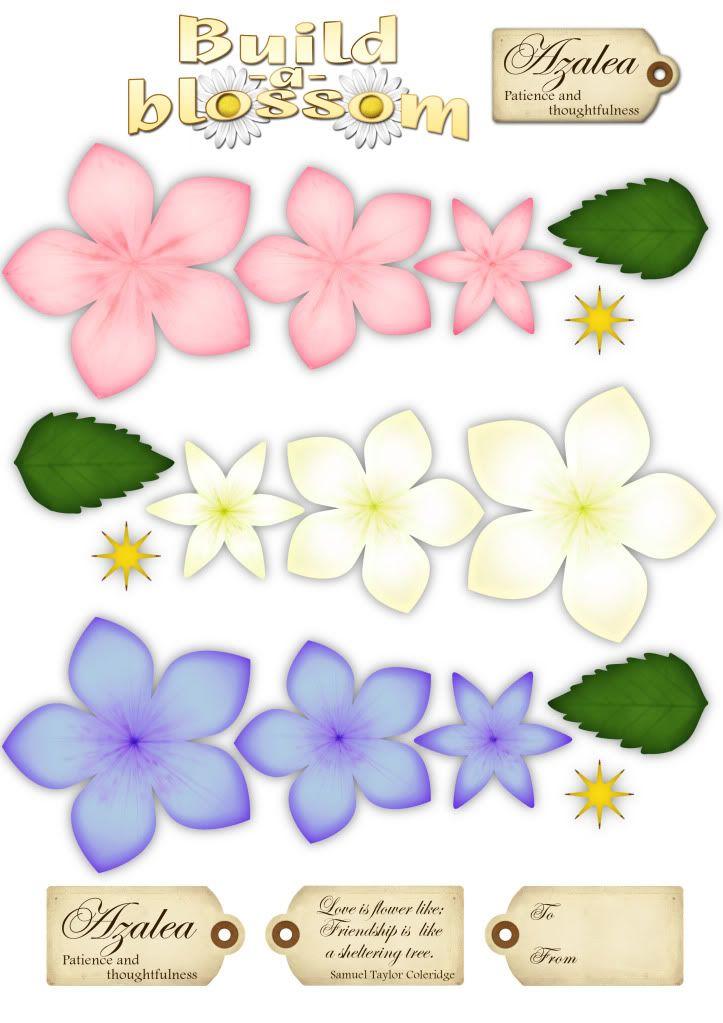 baileigh31's image  Printable flowers