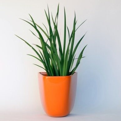 Architectural Pottery DL Domino Wall Planter/Container - $248.00