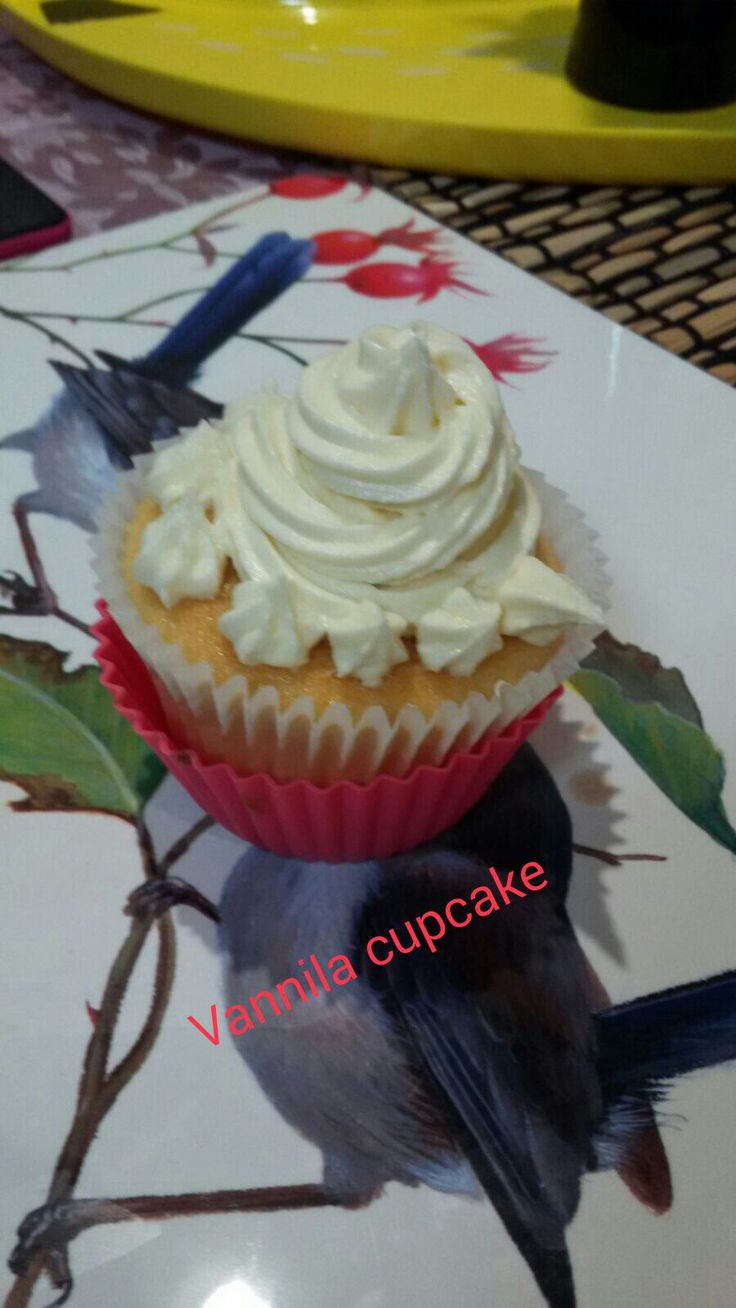 Cupcakessss