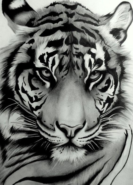 Beautiful tiger tat