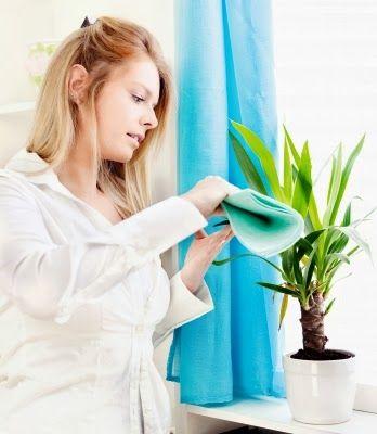 Pi di 25 fantastiche idee su calendario settimanale su pinterest agenda settimanale - Assicurazione per le casalinghe ...