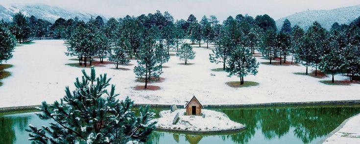 """Conoce el mejor lugar para esquiar en México. ¿Sabías que hay un lugar en México conocido como la """"Suiza Mexicana"""" en donde puedes esquiar? Lánzate al Pueblo Mágico de Arteaga y anímate a practicar deportes de nieve."""
