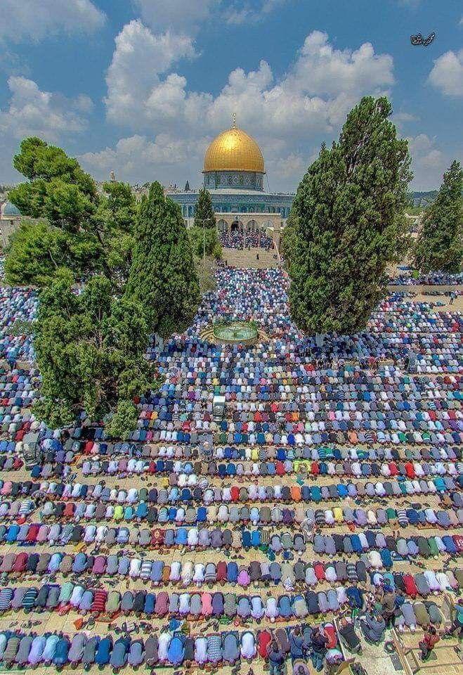 نحو 180 ألف مصل يؤدون صلاة الجمعة الأولى من شهر رمضان في رحاب المسجد الأقصى المبارك Palestine Masjid Ramadan