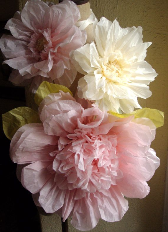 Set of 3 Giant Paper Flowers L Pink / Vanilla Perfect