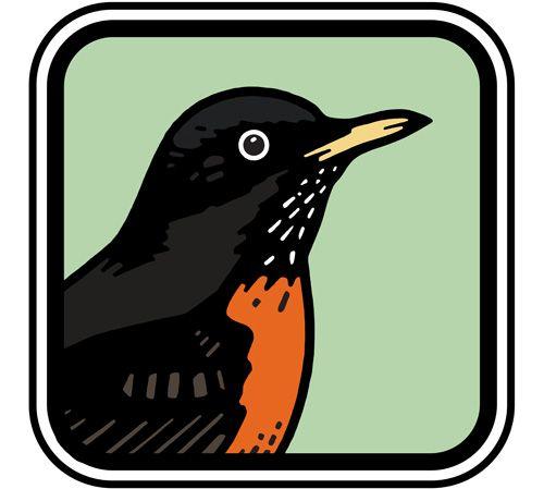 Peterson birding apps