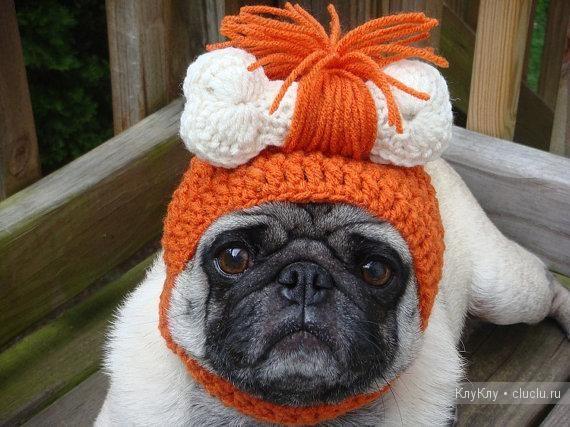 собака вязание мопс шапка крючком