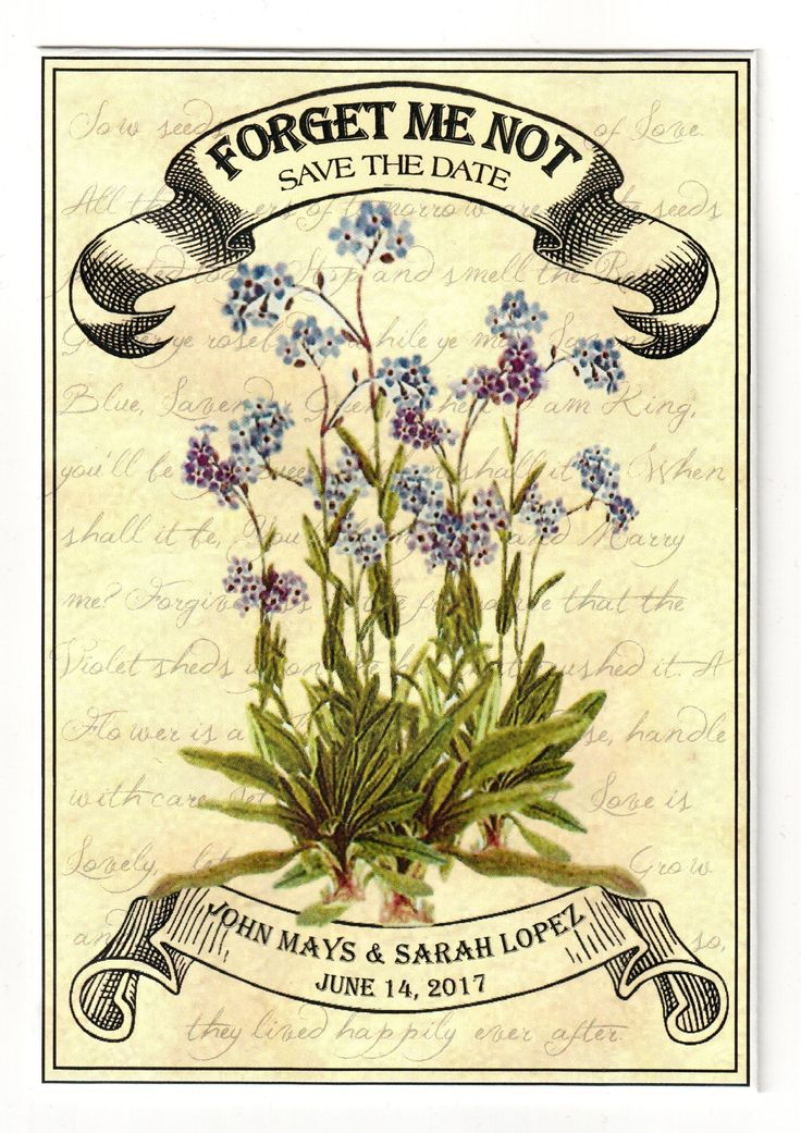 Offering Personalized Seed Packets Wedding Seeds Earth Friendly Save The Dates Memorial And Funeral For All Occasions