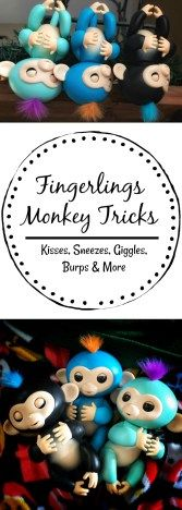 """Fingerlings Monkey Tricks to impress your Kids! Are your kids the proud new owners of a Fingerlings Monkey? If so, here are some neat tricks that your new """"pet"""" can do!"""