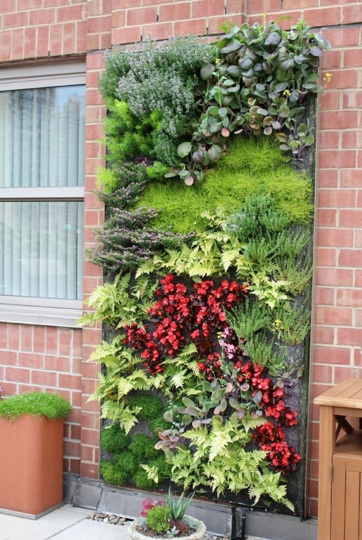 122 best Vertical Gardening images on Pinterest | Vertical gardens ...