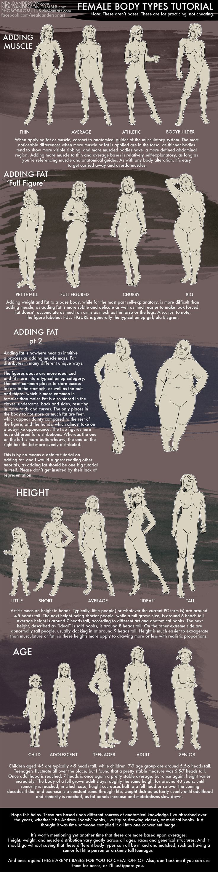 Female Body Types Drawing Tutorial by Phobos-Romulus on deviantART: