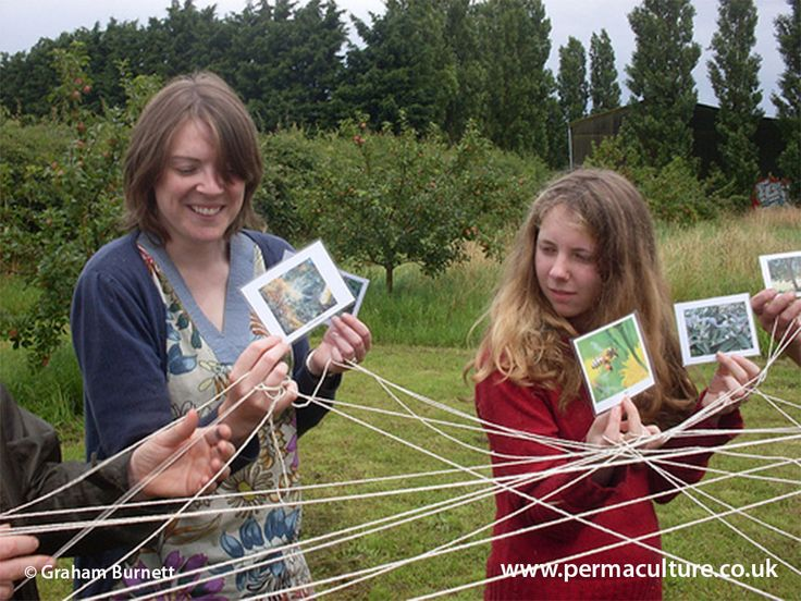 Can't Afford a Permaculture Course? How to learn for free | Permaculture UK