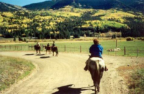 20 best pagosa area business images on pinterest for Fireside cabins pagosa