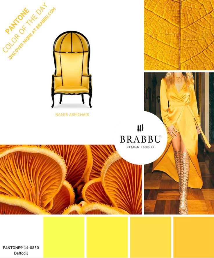 Trouvez de l 39 inspiration avec la couleur pantone du jour daffodil projets de d coration d - Decoratie interieure hedendaagse trend ...