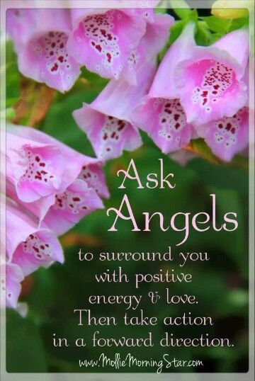 Ask Angels