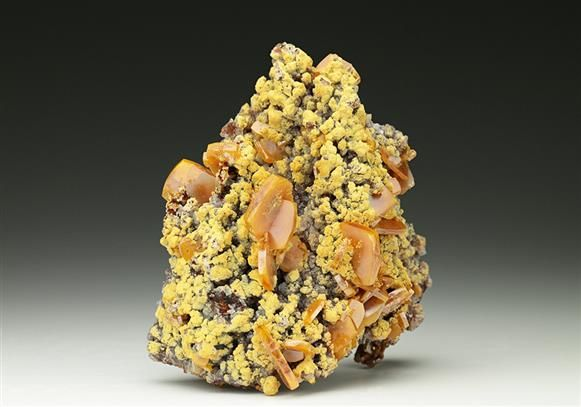 Abundant tabular crystals of Wulfenite with yellow Mimetite from the Mapimi mining area in Mexico. Crystal Classics Minerals