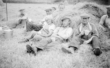 """Everything stopped for tea at 3pm during the long hot days of the harvest at Haugh Farm. Mrs Hall brought the tea things up in a metal pail and always provided ""a good basket"". (l-r): Tom Russell, John Hall, Bunty Russell, Jimmy Davidson, Sadie Russell, Tom Suttie, Pat McQueen.""Tom Russell, Land Army, Army Ww2, Teas, Victory Crop, Blitz Kids, Long Hot, John Hall, Metals Pail"