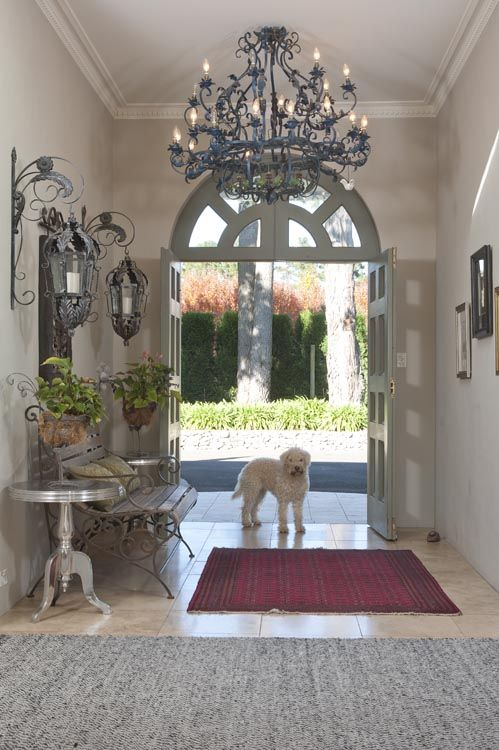 Home is where your dog is - hopefully. What a welcome home!